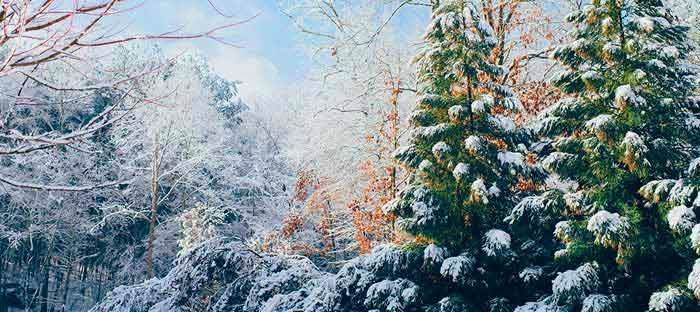 Winter is a wonderful time to enjoy shopping, dining, and the wonderful sights in Sellersville, Bucks County PA